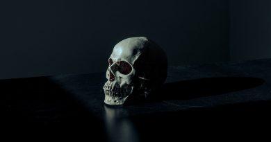 Morte: a única certeza da vida