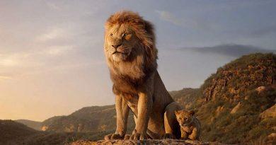 O Rei Leão não dança, gente!