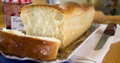 Brioche, o pão versátil
